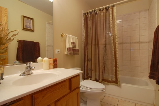 Real Estate Photography - 6519 S Ingleside, Chicago, IL, 60637 - Bathroom